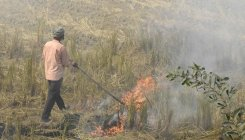 Stubble burning: Shoddy policy