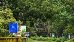 Bandipur road: Centre suggests alternative routes