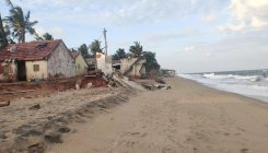 Beach restoration efforts see success