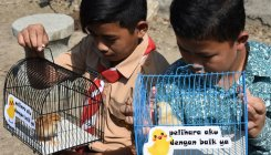 ChickTok: Pets given to kids to wean them off phones