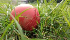 Delhi player banned by BCCI for age fudging