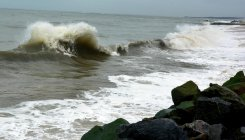 Entry of sewage into sea: NGT seeks report from states