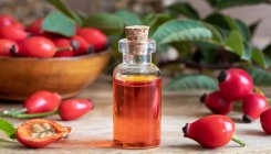 Rosehip oil beats the chill