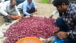 Onion prices gave city hotels a scare
