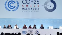 UN deadlocked, detached from climate emergency