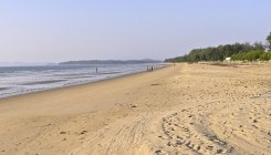 Receding sea adds 150 hectares to Karwar coast