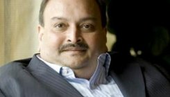 Don't pass order on ED plea against Choksi: HC