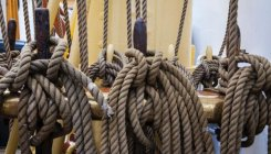 Unravelling a knotty mystery