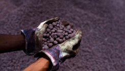 FIMI pushes for exemption of export duty on iron ore