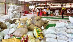 India's rice exports fall sharply