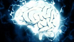 'Brain region influencing all human emotions mapped'