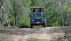 'Free safari' for farmers at Bandipur forest