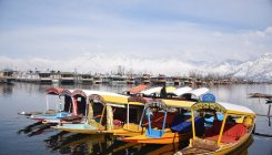 With Rs 1k cr loss, J&K boat owners woo K'taka tourists