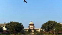 SC expresses grave concern over shrinking forest cover