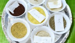 Make millets part of mid-day meals: MHRD to states