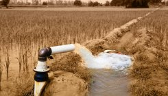 Irrigation scheme: Karnataka lost Rs 821 cr in 5 years