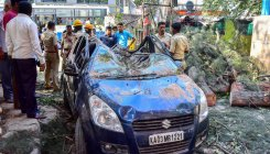 Branches fall on vehicles: Man dead, daughter crirtical