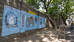 Bengaluru: Grilling the Lalbagh wall
