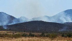Hundreds of acres destroyed in wildfire