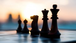 Lockdown: Teen chess wizards busy training online