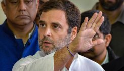 Allow farmers to harvest crops with safety: Rahul