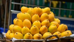 Railways brings king of fruits to North India