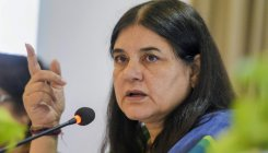Feel bad when Muslims say won't vote for lotus: Maneka