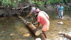 Shishila villagers clean river, clear driftwood