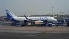 IndiGo transports 202 Vietnamese nationals to Delhi