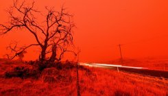 Australia bushfire smoke linked to hundreds of deaths