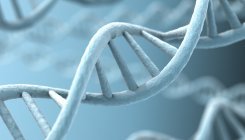 'Gene linked to dementia also associated with COVID-19'