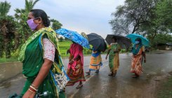 Monsoon progresses well so far, more rains predicted