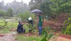 Greening Western Ghats by planting fruit-bearing plants