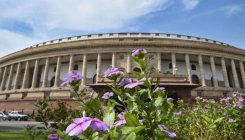43 of 61 newly-elected Rajya Sabha MPs are first-timers