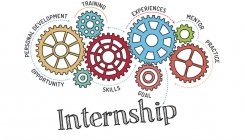 Go global with virtual internships