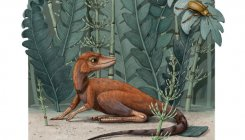 'Fit into hand'-sized reptile a forerunner to dinosaurs