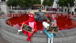 Animal rights protesters dye fountains red in London