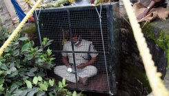 Forest official enters well to help rescue leopard