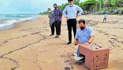 Masked booby rescued in Kundapur