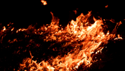 Fire at factory in West Bengal's Jalpaiguri district