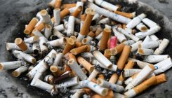 'Chemical levels in cigarette, beedi butts not toxic'